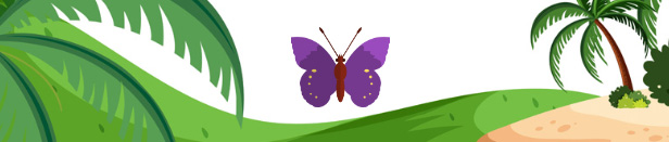 picture of a butterfly on a beach for example of what we can make with SLATE and assets in ZIM!